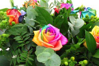 harga bunga mawar per tangkai di rawa belong