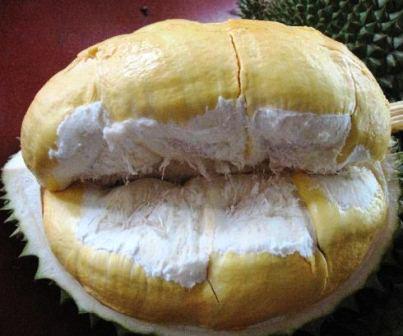 Daging Buah Durian Bawor