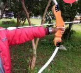 Harga Busur Recruve Standarbow 40