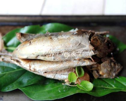 Harga Ikan Tongkol Per Kg