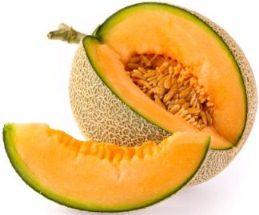 Harga Melon Golden