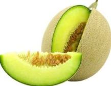 Harga Melon Hijau