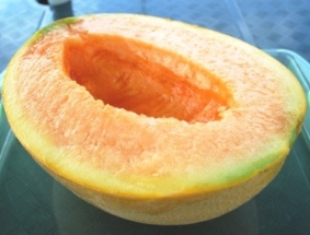 Harga Melon Yubari King