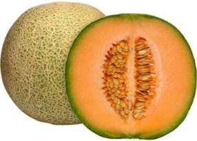 Harga Rock Melon