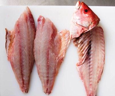 Harga Ikan Fillet