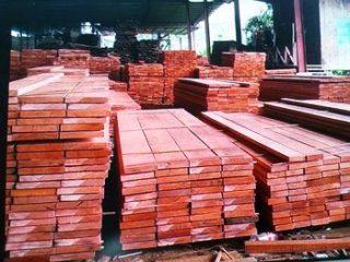 Harga kayu meranti merah