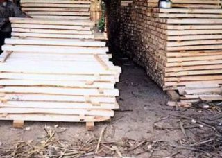 Harga kayu sengon papan