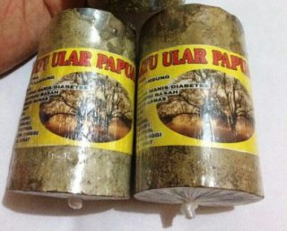 Harga kayu ular papua asli