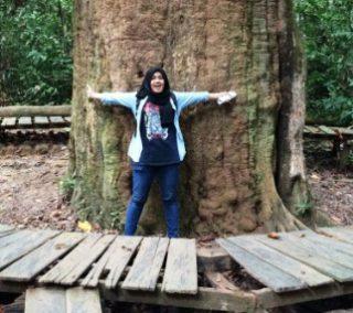 Pohon Kayu Besi Kalimantan