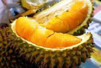 Buah Durian Musang King