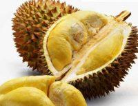 Buah Durian Petruk