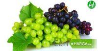 Harga Buah Anggur