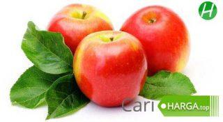 Harga Buah Apel