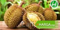 Harga Buah Durian