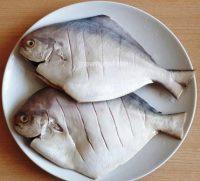 Harga Ikan Bawal Putih