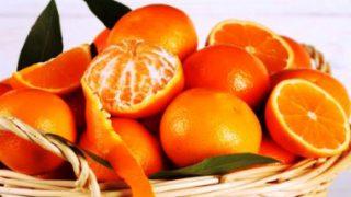 Harga jeruk sunkist