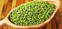 Harga Kacang Hijau Perkilo