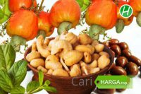 Harga Kacang Mete