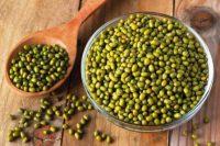 Harga Manfaat Kacang Hijau