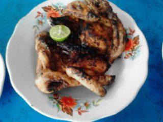 Harga Ayam Tilawang Gianyar