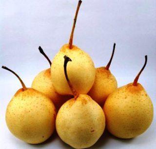 Harga Pear Yalie