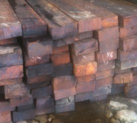 Harga kayu merbau Per batang