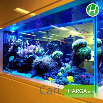Informasi Harga Aquarium Besar Agustus 2020