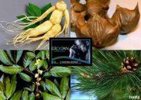 Harga Erogan obat herbal