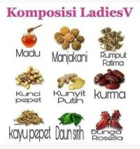 Harga Komposisi Ladies V