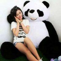 Harga Boneka Panda Jumbo