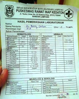 Rincian Biaya Cek Darah di Puskesmas Bandar Lampung