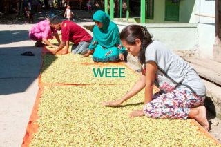 Prediksi Harga Sulawesi Utara